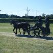 giostra dei cavalli 064.jpg