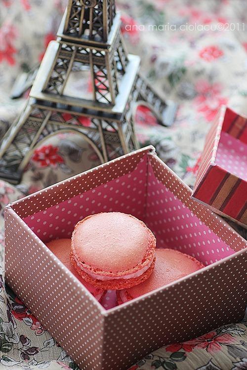 Pink macarons 6