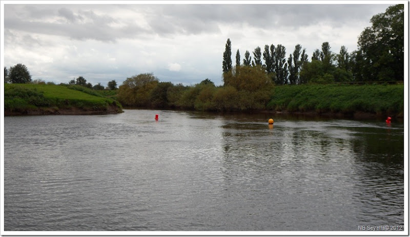 SAM_3112 River Nidd