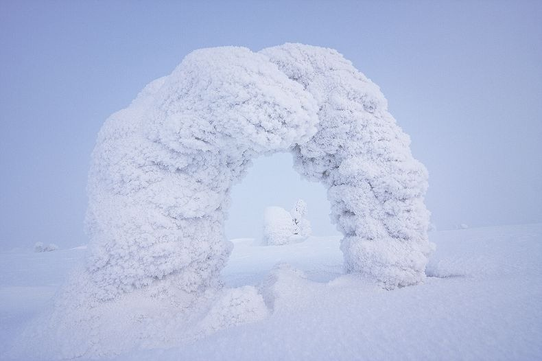 Sentinels-of-the-Arctic-3