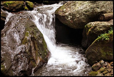 25c - Anna Ruby Falls Trail - Oh the sound of rushing, spilling water