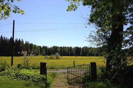 Photo 2012-05-27 13 23 51