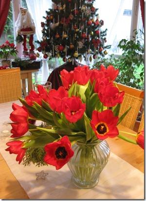 Tulips tree