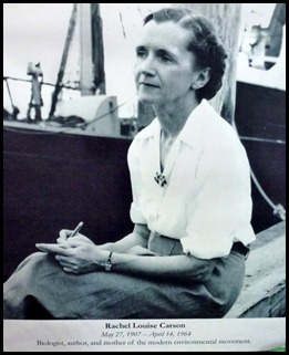 02b - Rachel Carson - photo
