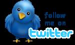 twitter-logo top9