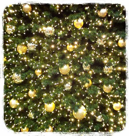 LINEcamera_share_2013-12-01-15-55-37