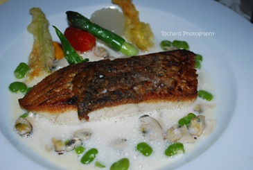 Air flown Ocean fish, serve with Brittany winkles in light ginger nage