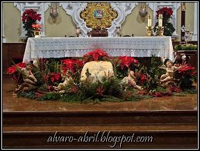 carmen-coronada-malaga-floral-vestimenta-navidad-2011-alvaro-abril-(2).jpg