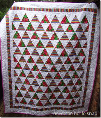 Triangle Flowers and Brights quilt