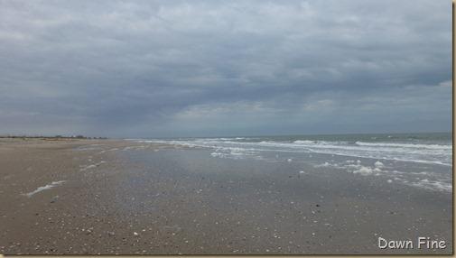 Edisto Beach State Park_022