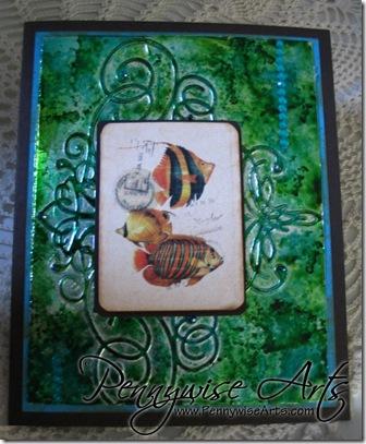 Bubblefish Card2