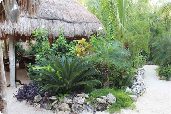 Oscar-Lalos-Garden
