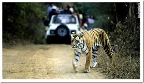120725070514-india-tiger-parks-story-top