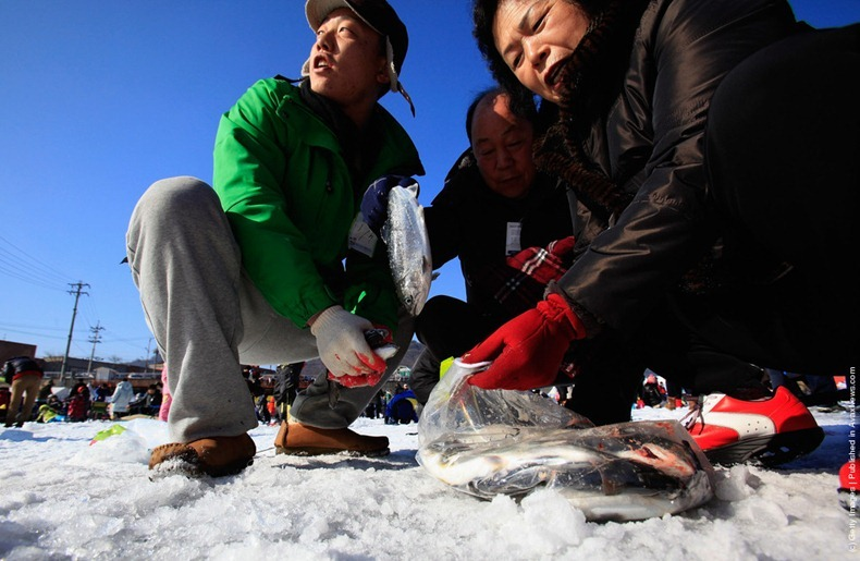 hwacheon-ice-festival-11