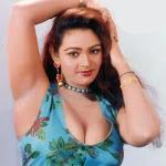 mallu-movie-actress-shakeela-hot-stills-pictures-photos.jpg