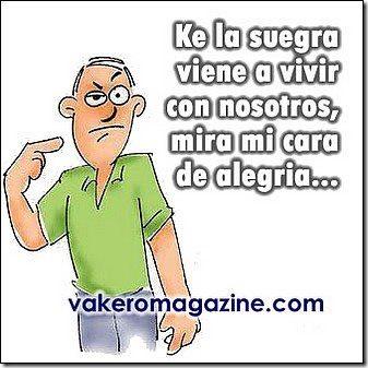 humor suegras (11)