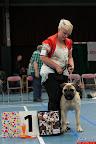 20130510-Bullmastiff-Worldcup-0199.jpg