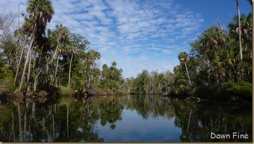 Chassahowitza River canoeing_133