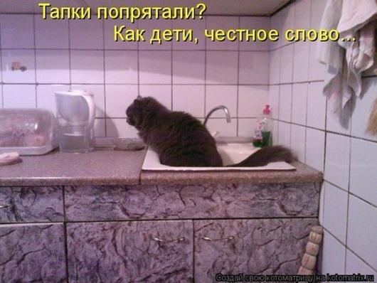 68607739_1293828173_kotomatrix_46