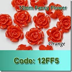 12FF5 copy