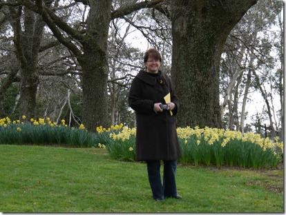 MH Daffodil Day Rydal 004