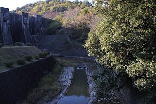 下流の橋より下流の川を望む