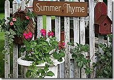 SummerThyme