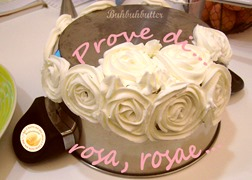 Prove di rose