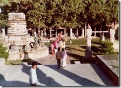SueReno_Mahabodhi Stupas 2