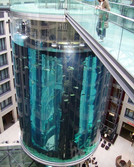Cylindrical Aquarium 08