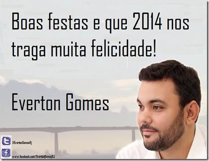 everton 2014