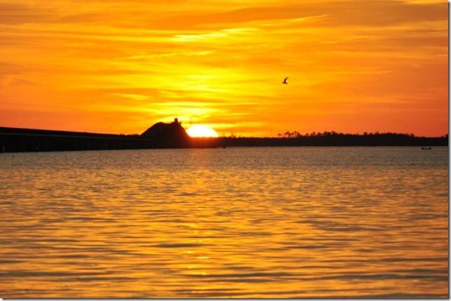 sunset november 19 210