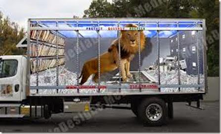 lion_cage