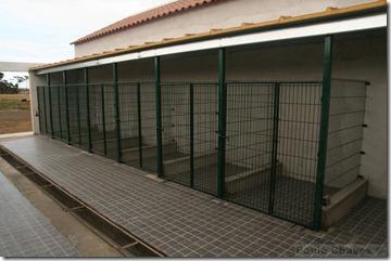 Canil Municipal Vila do Porto 2011-06-26 m_agua0001