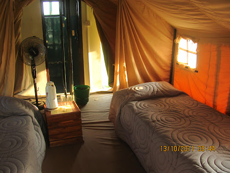 interior cort