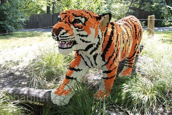 bronx-zoo-lego-tiger