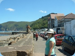 porlock july 2011 005
