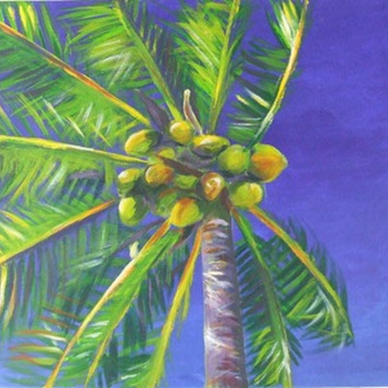 Catherine Armstrong – Nature Paintings of the Bahamas
