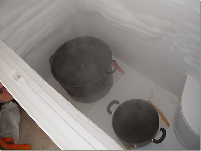 Pots on Cutting boards in freezer