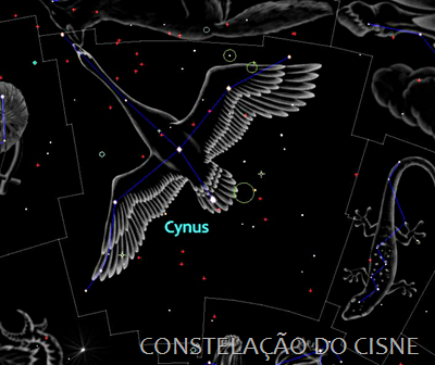 Cygnus - ilustração