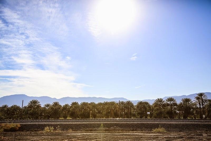 65mph landscapes-4