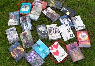 libros-2013