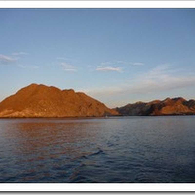 Cedros Island