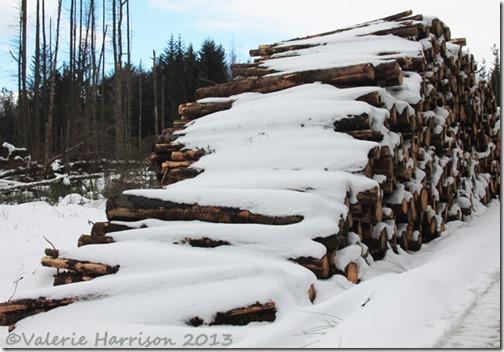 13-logs