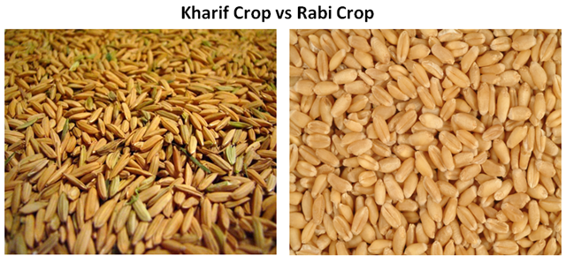 Kharif crop vs Rabi crop