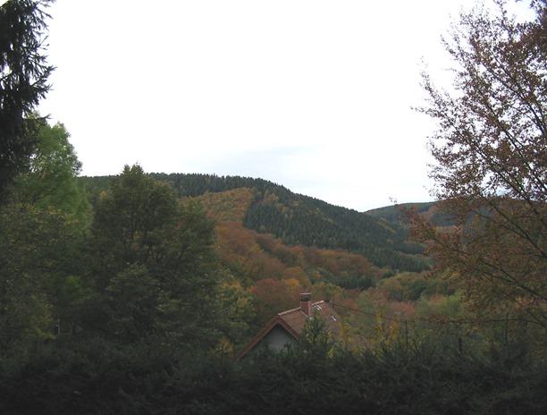 Huertgen_Forest