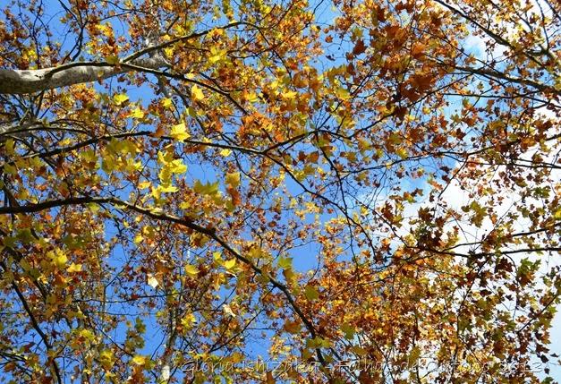 Glória Ishizaka - Outono 2013 - 1