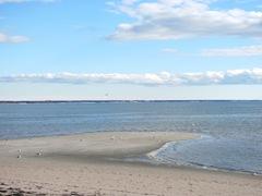 11.2011 Skaket beach Dennis`