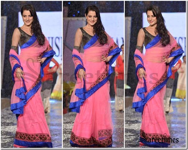 Amisha_Patel_Manish_Malhotra_Saree (2)