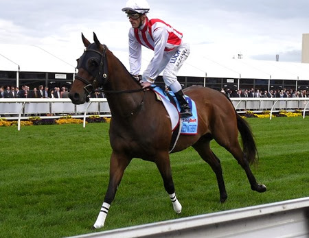 cox plate_rekindled interest 1